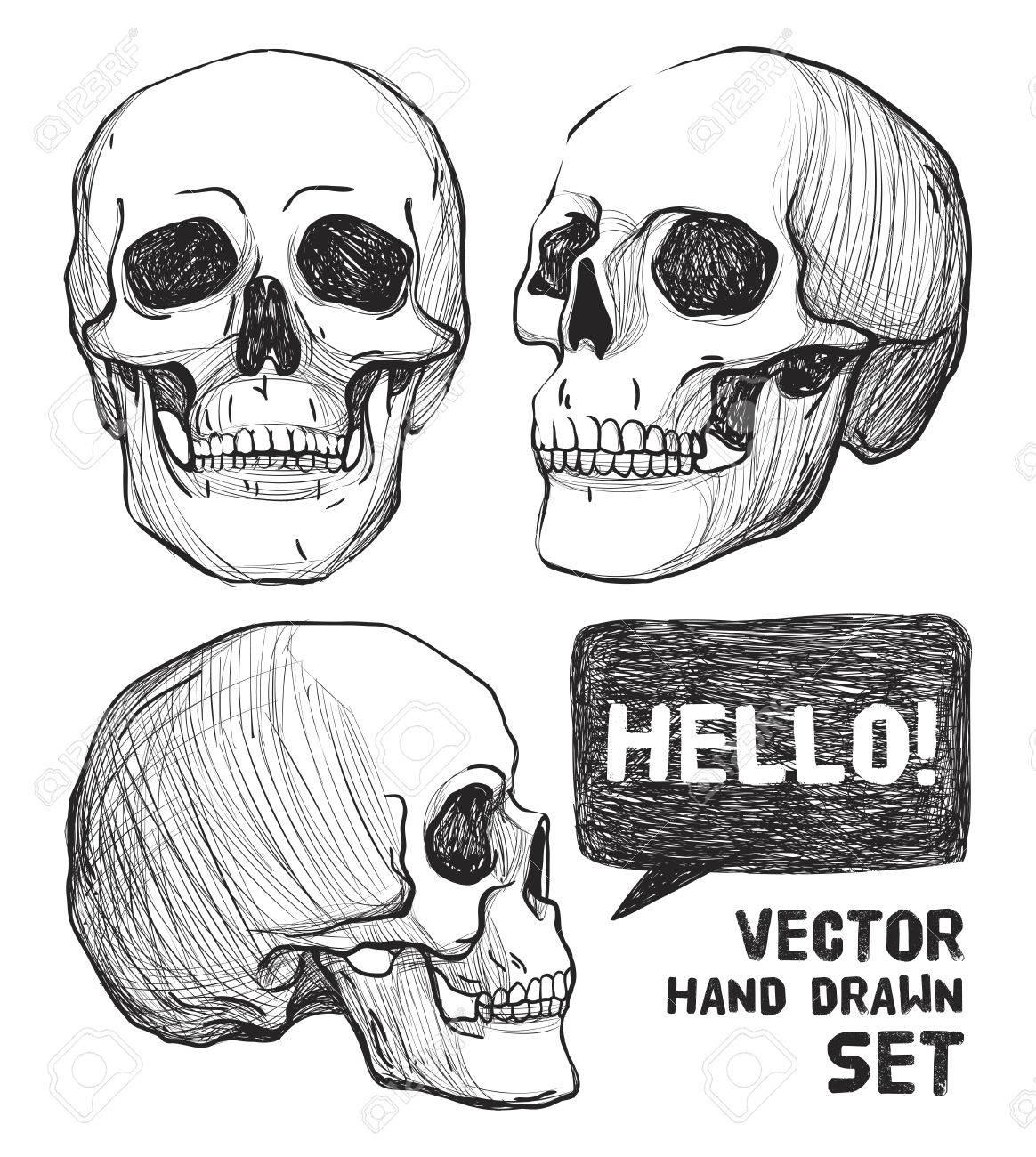 Cráneo Y Flores. Arte Del Tatuaje De La Vendimia, Libros Para ...