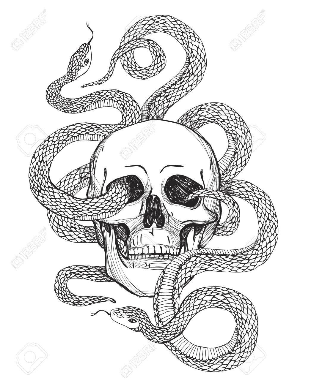 Skull and Snake. Tattoo art, coloring books. vintage illustration..