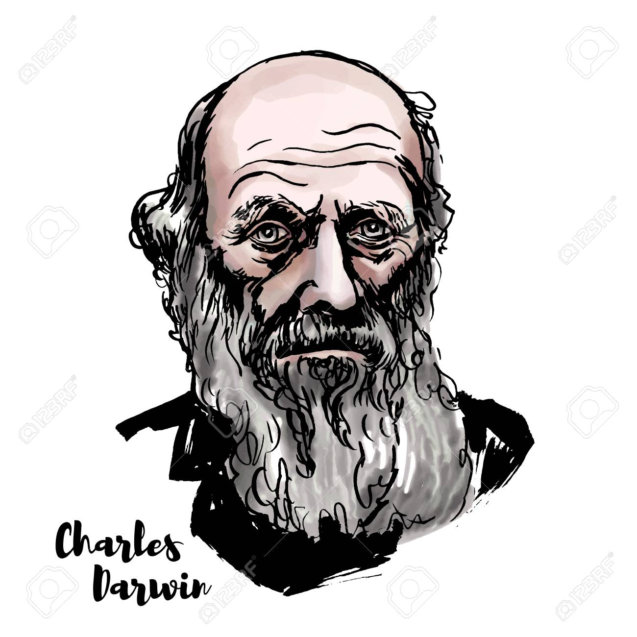 Charles Darwin watercolor vector portrait with ink contours. English naturalist, geologist and biologist, best known for his contributions to the science of evolution. - 110435008