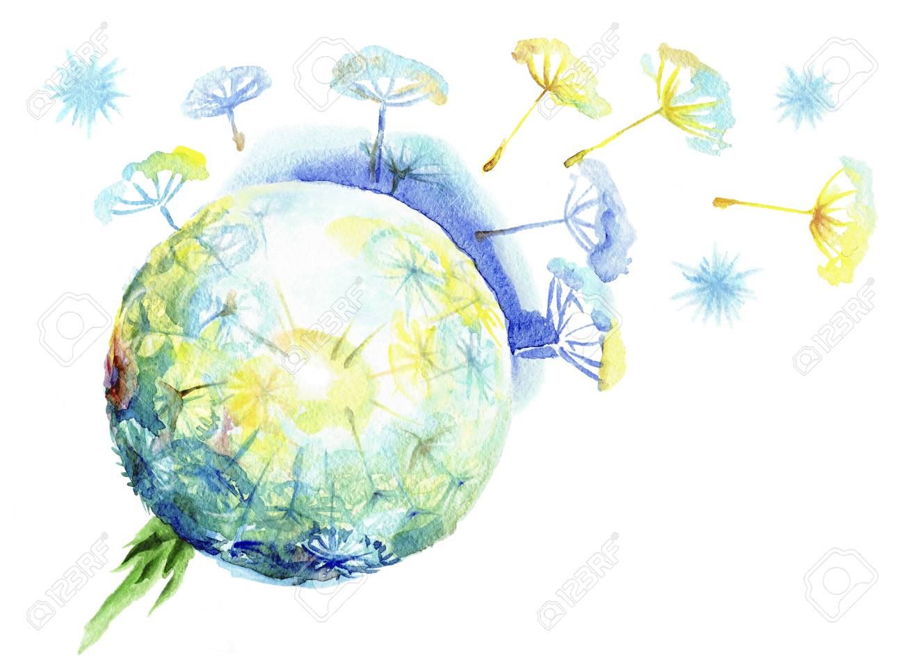 Fluffy dandelion dispersing seeds.Watercolor sphere of a dandelion on a white background - 68799443
