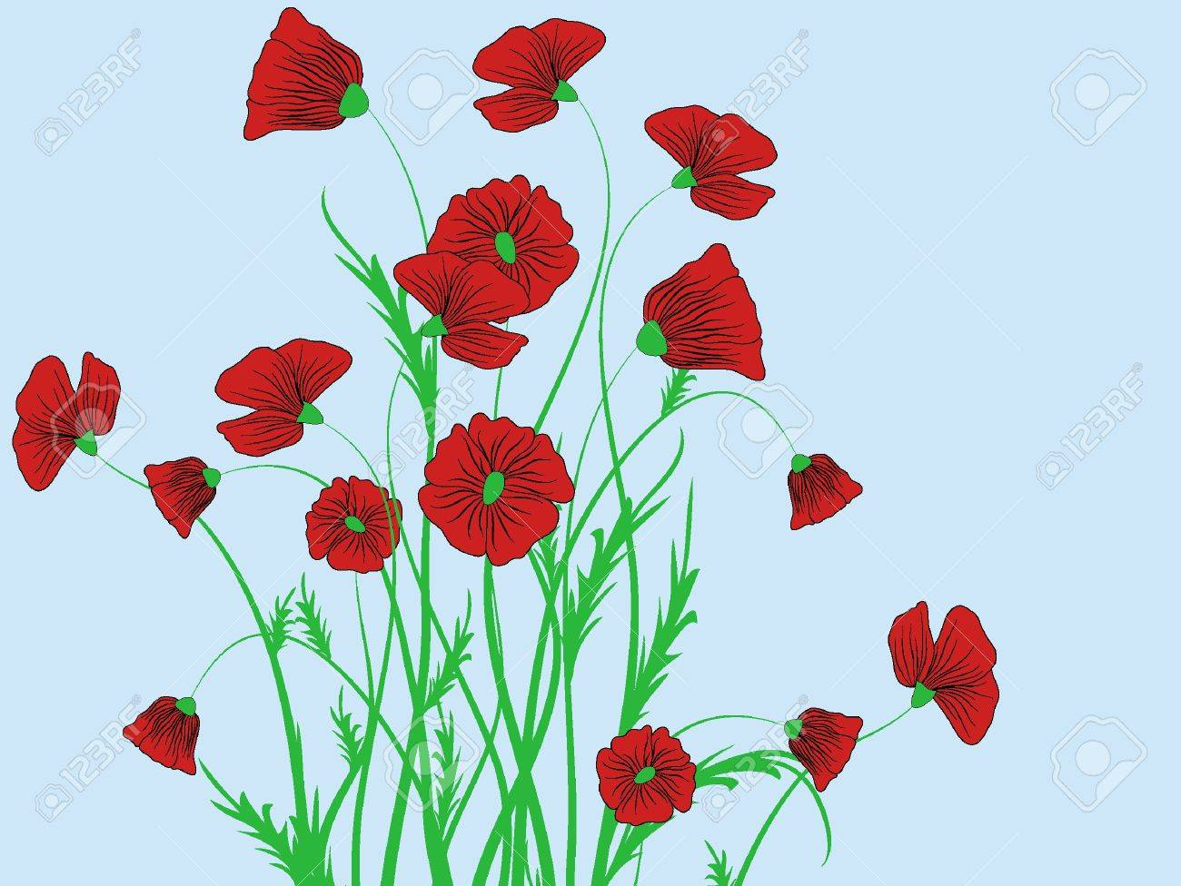 Poppy Flower Pattern Abstraction Illustration Stock Photo Picture