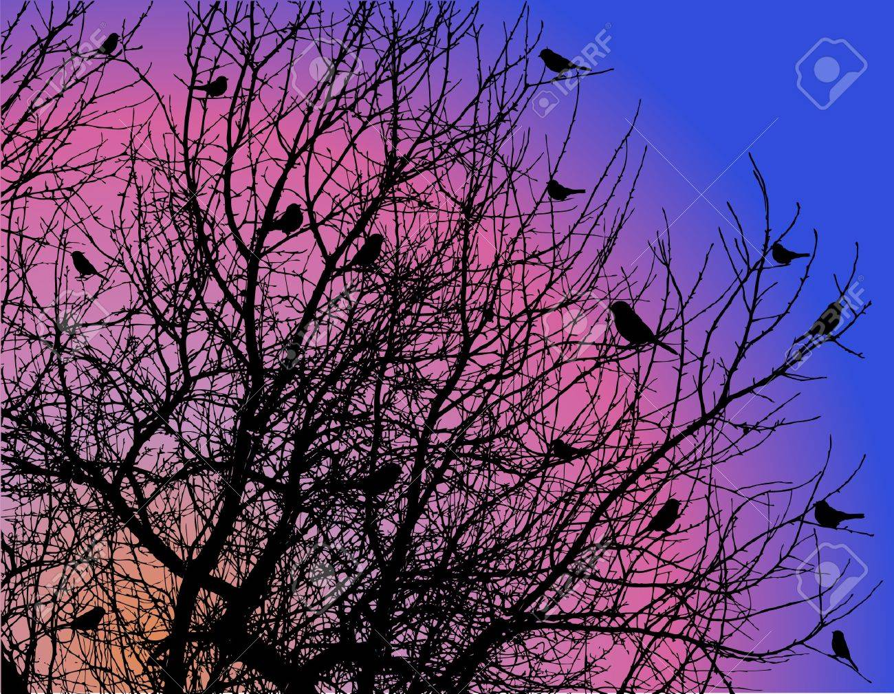 birds on tree branches on dawn sky Stock Vector - 8837920