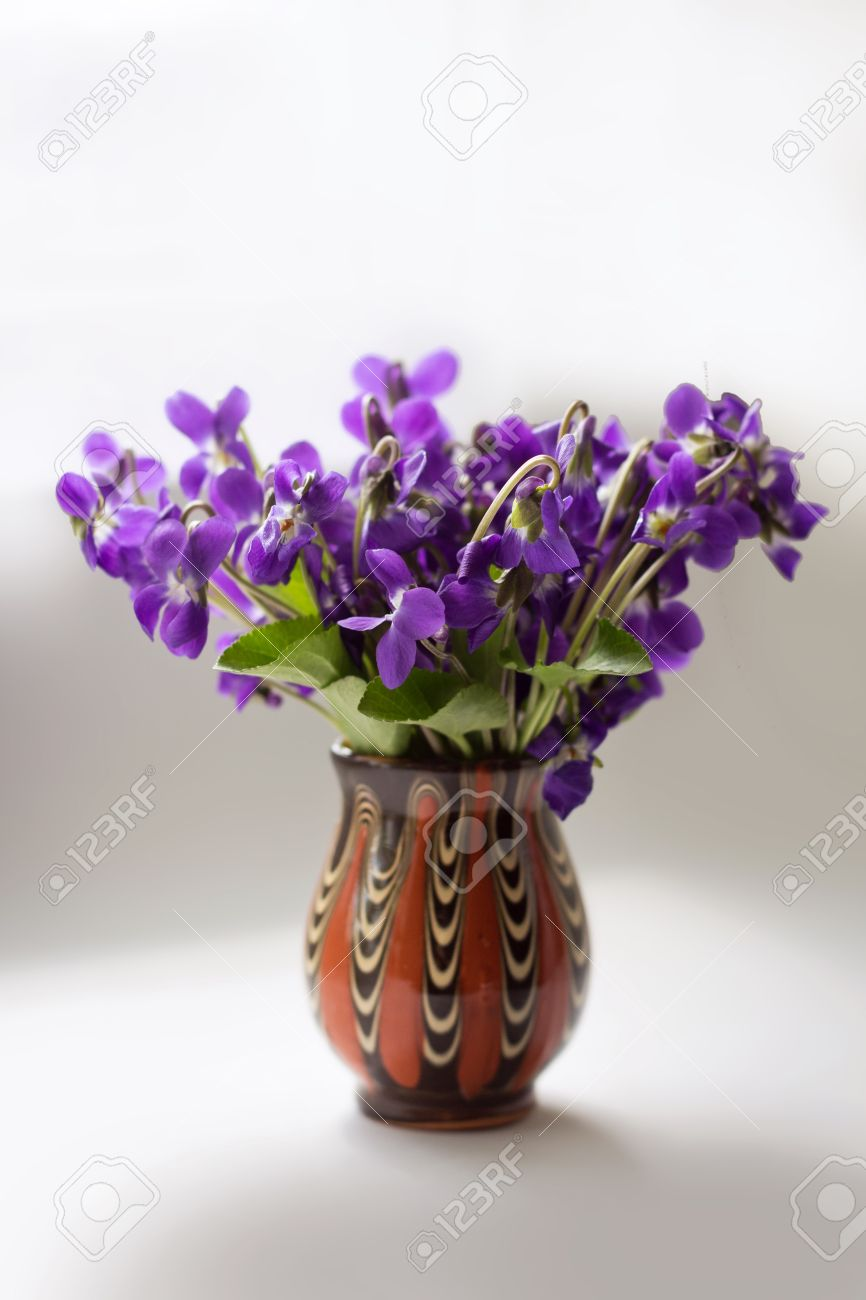 Beautiful bouquet of field violets in a vase stock photo picture beautiful bouquet of field violets in a vase stock photo 19528095 reviewsmspy