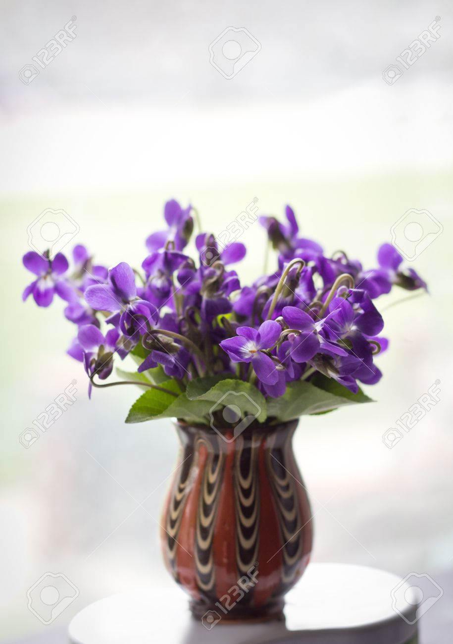 Beautiful bouquet of field violets in a vase stock photo picture beautiful bouquet of field violets in a vase stock photo 19528096 reviewsmspy