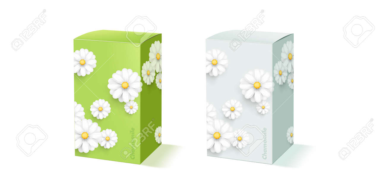 Mockup of packcge box shape with modern chamomile or fluffy white flower decor on green and light blue - 173869290