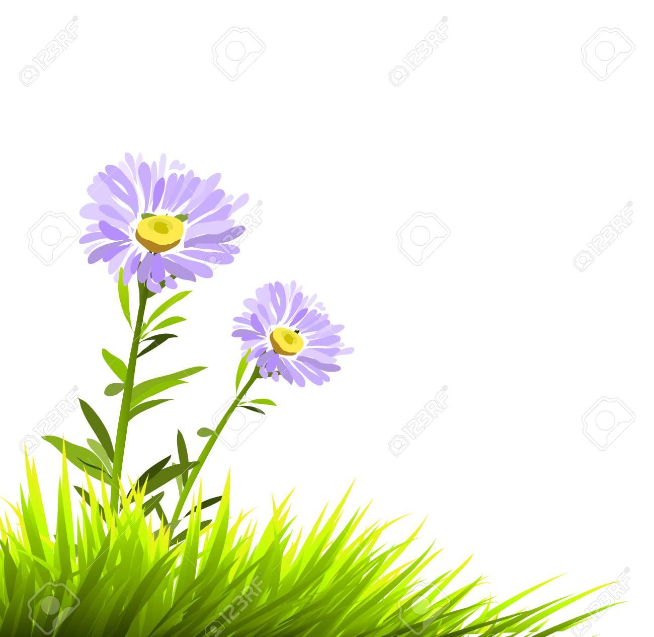 purple flowers Stock Vector - 6824001