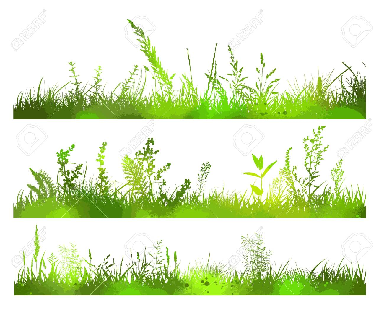 Abstract background with black silhouettes of meadow wild herbs and flowers. Wildflowers. Floral background. Wild grass. Vector illustration. - 149135972