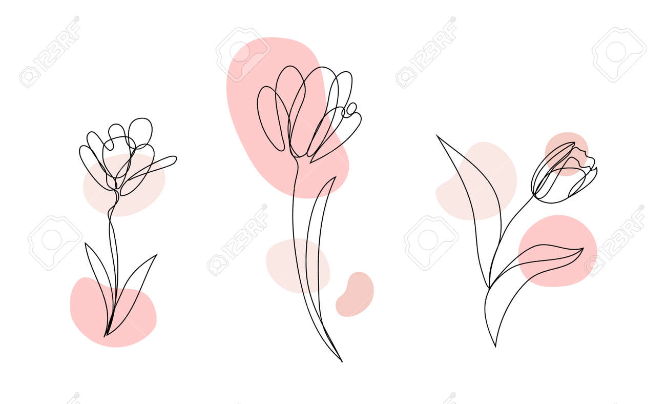 Vector set of hand drawn, single continuous line flowers - tulip, leaves. Art floral elements. - 171516276