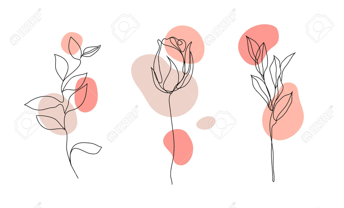 Vector set of hand drawn, single continuous line flowers - roses , leaves sketch. Art floral elements. Use for t-shirt prints - 171516282