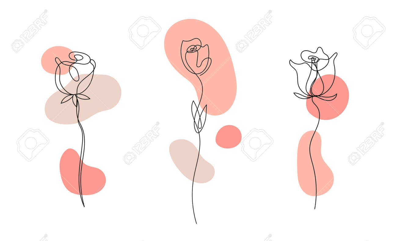 Vector set of hand drawn, single continuous line flowers - roses , leaves sketch. Art floral elements. Use for t-shirt prints - 171516293