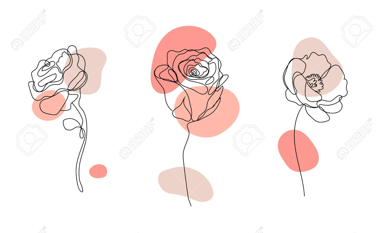 Vector set of hand drawn, single continuous line flowers - roses , leaves sketch. Art floral elements. Use for t-shirt prints, cosmetics. - 171516323