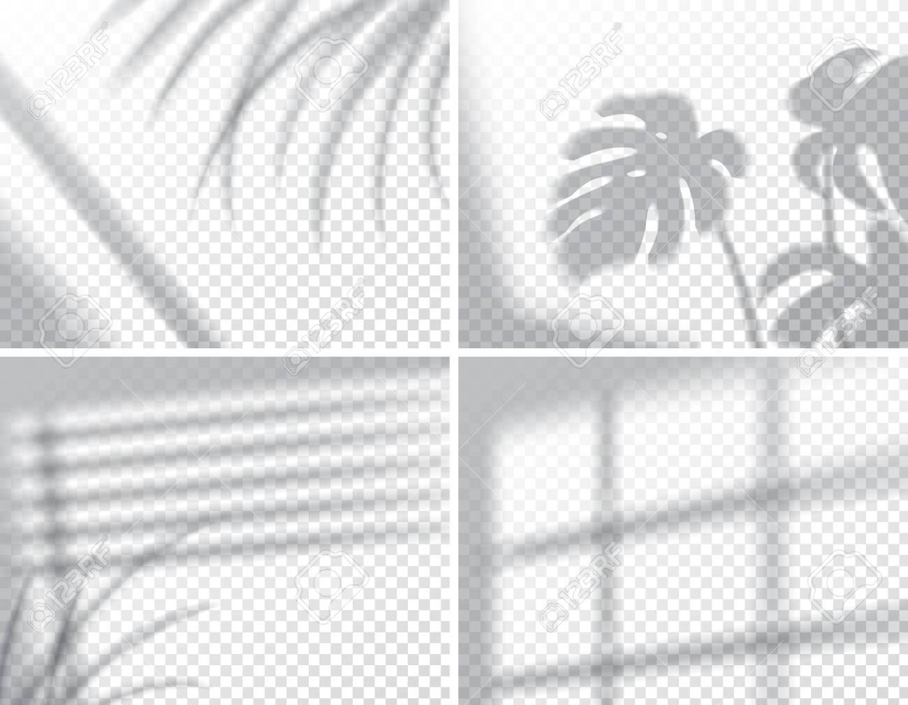 Set of shadows, overlay effects mock up, window frame and leaf of plants, natural interior light, vector illustration - 129393996