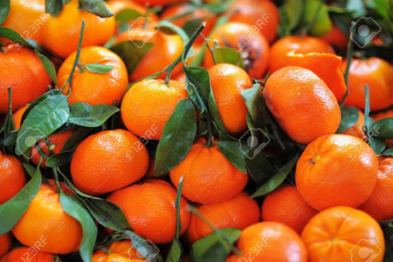 Fresh healthy bio tangerine on Paris farmer agricultural market - 41066241