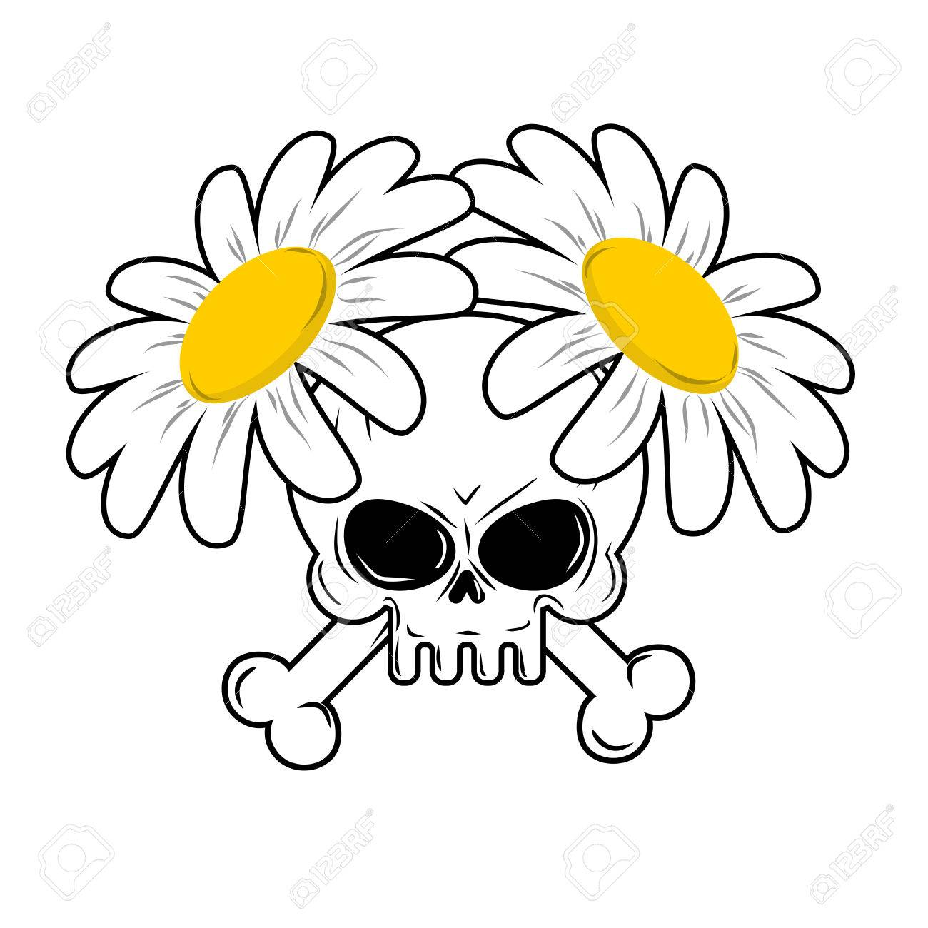Skull And Flowers Bones In Camomiles Death And Lovely White