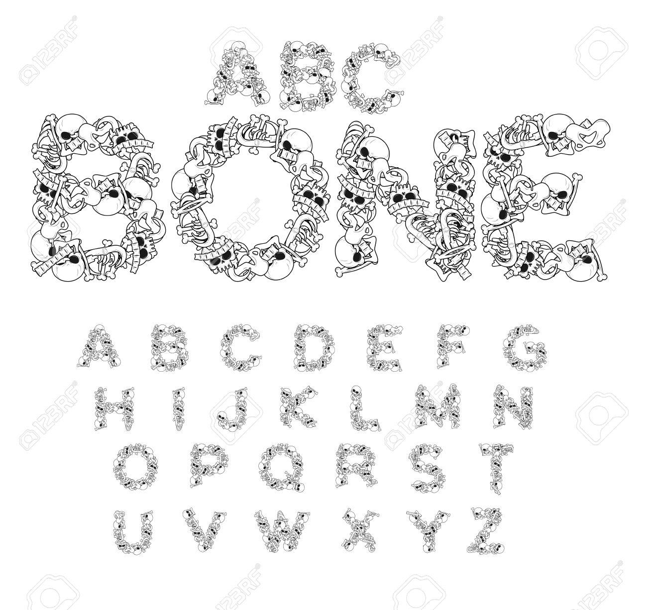 Bone ABC. Fuente Esqueleto. Cartas Anatomía. Cráneo Y La Columna ...