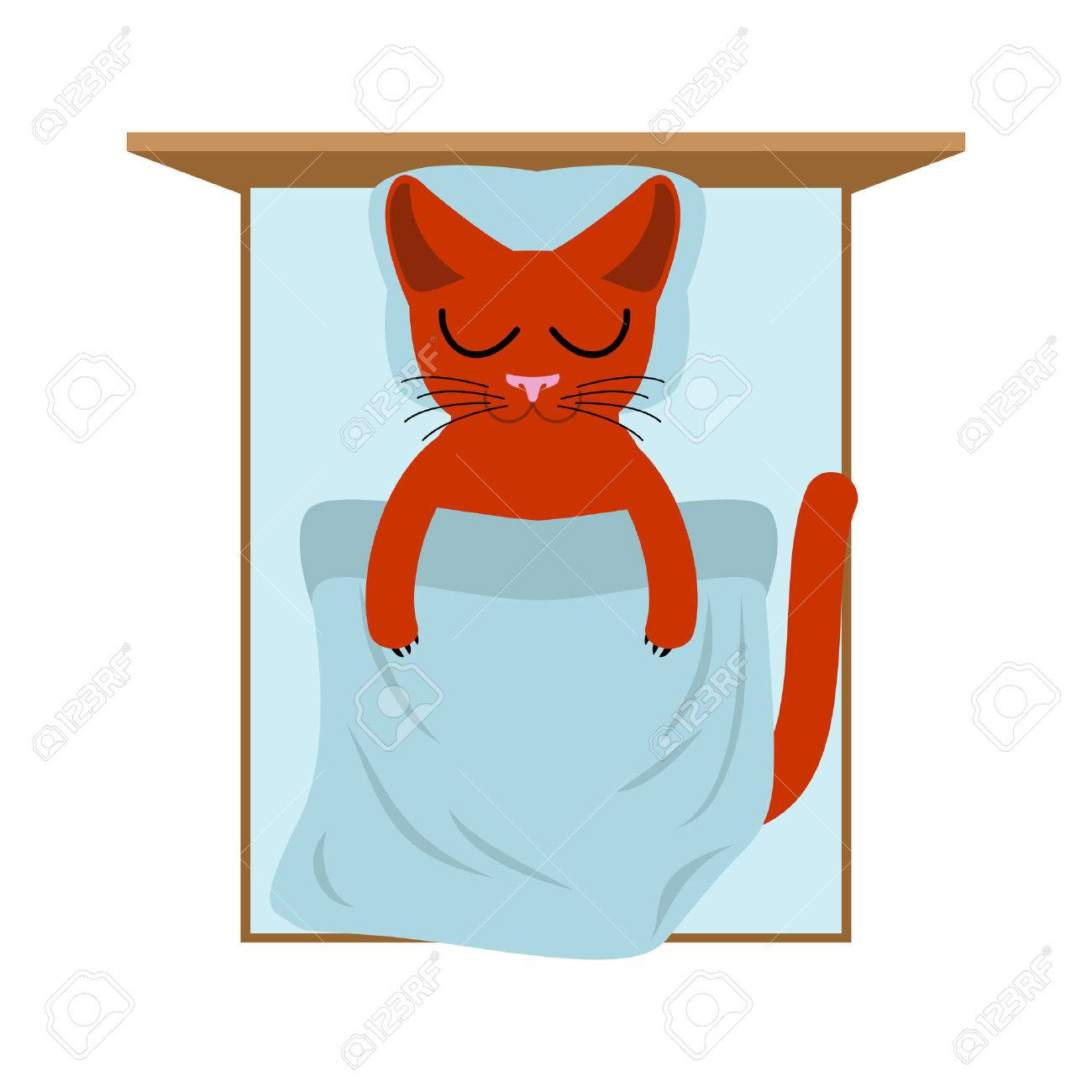 Cat Sleeps In Bed. Pillow And Blanket. Sleeping Kitten Royalty ... for Pillow And Blanket Clipart  156eri