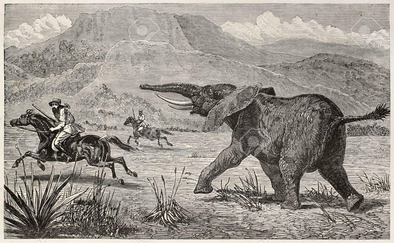 Wounded elephant pursuing British explorer Samuel Baker. Created by Neuville, published on Le Tour du Monde, Paris, 1867 Stock Photo - 15180309