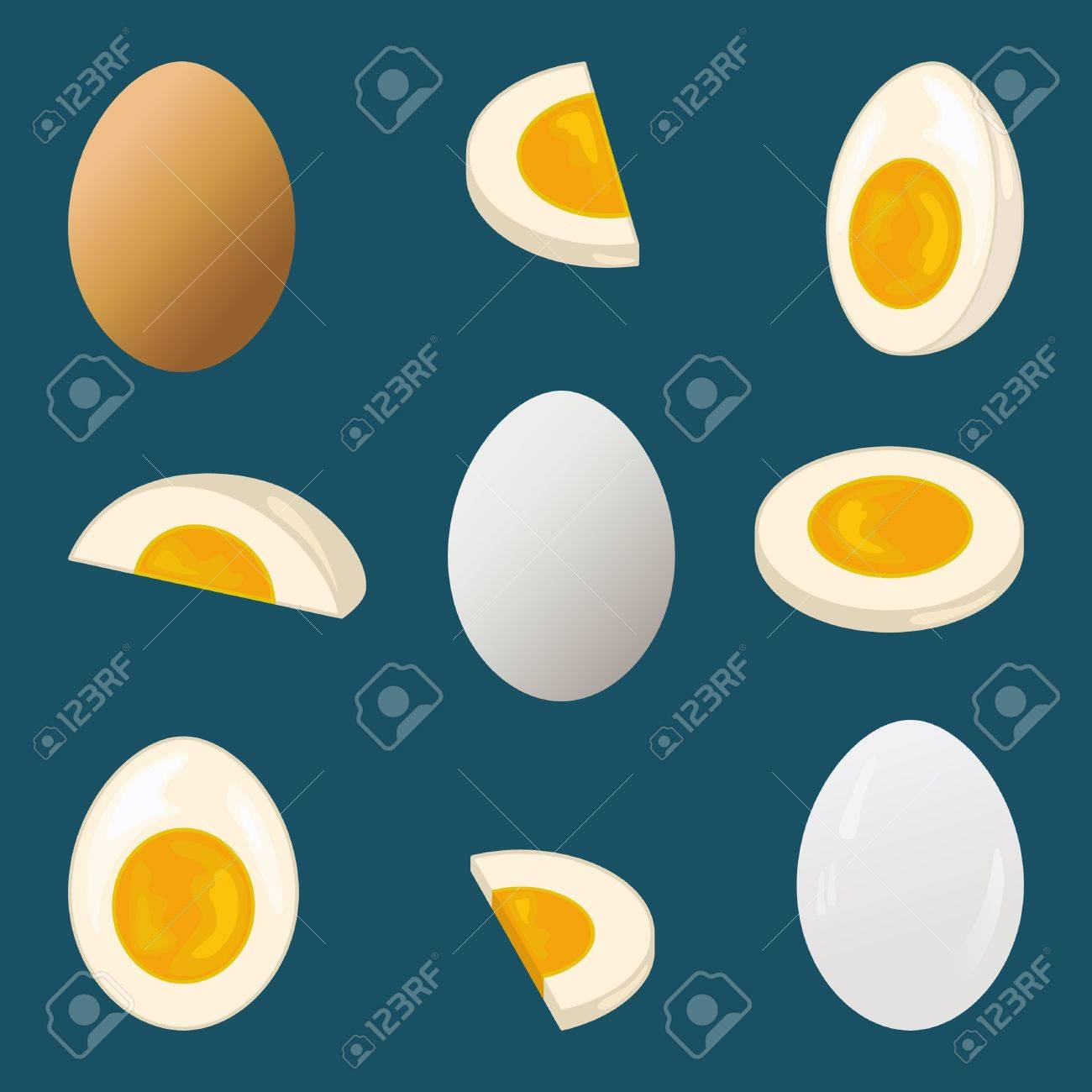 Hard-boiled egg, entire and sliced, nine views Stock Vector - 15333218