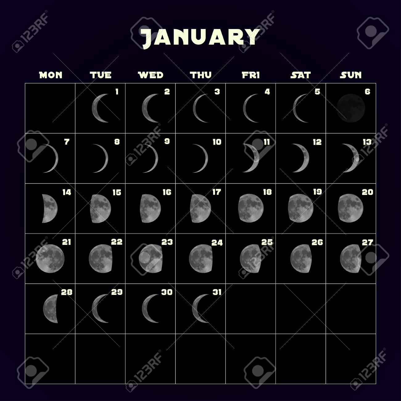 Moon Calendar 2019 January Moon Phases Calendar For 2019 With Realistic Moon. January. Vector