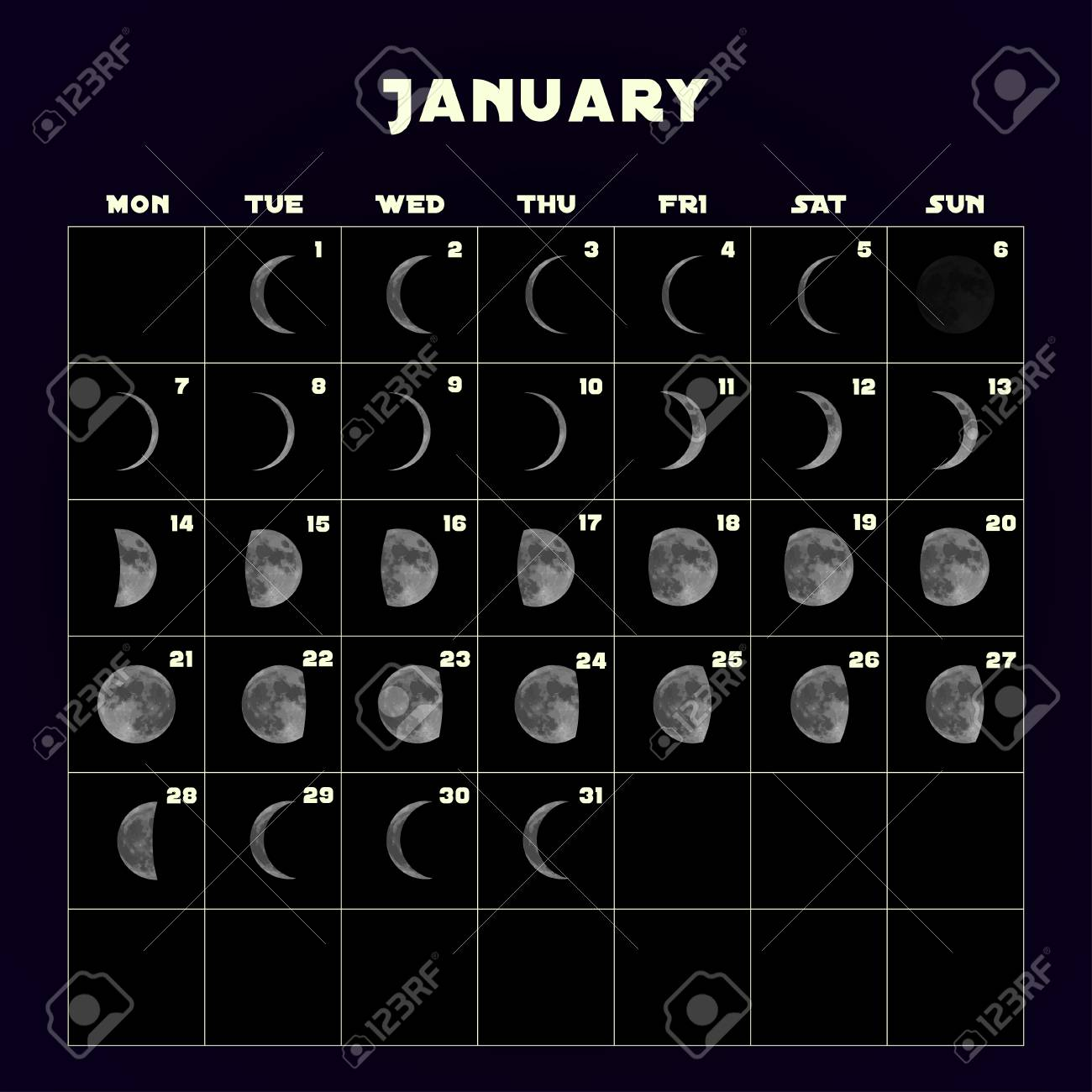 Moon Phases Calendar.Moon Phases Calendar For 2019 With Realistic Moon January Vector