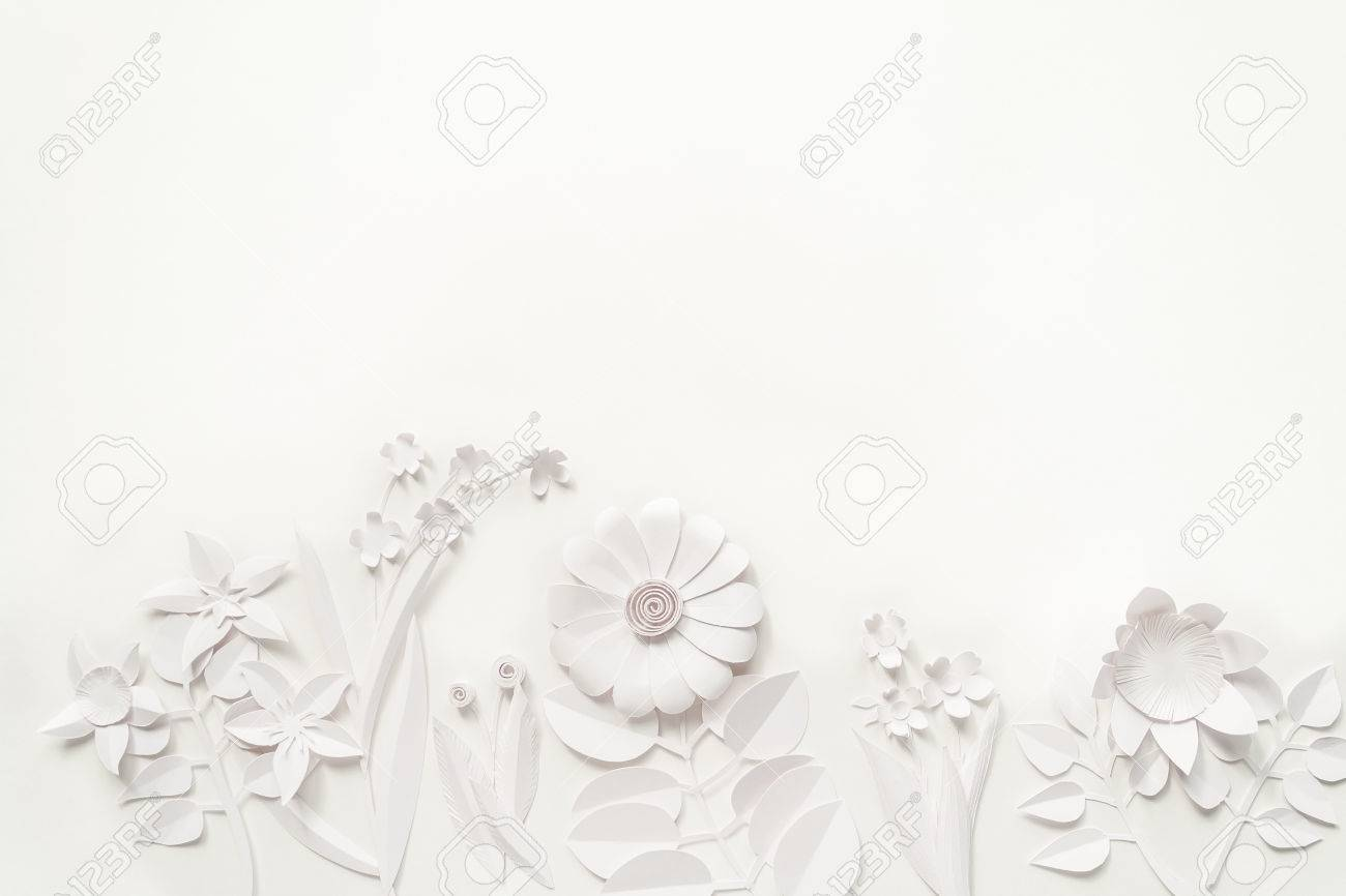 White Background Flower Wallpaper