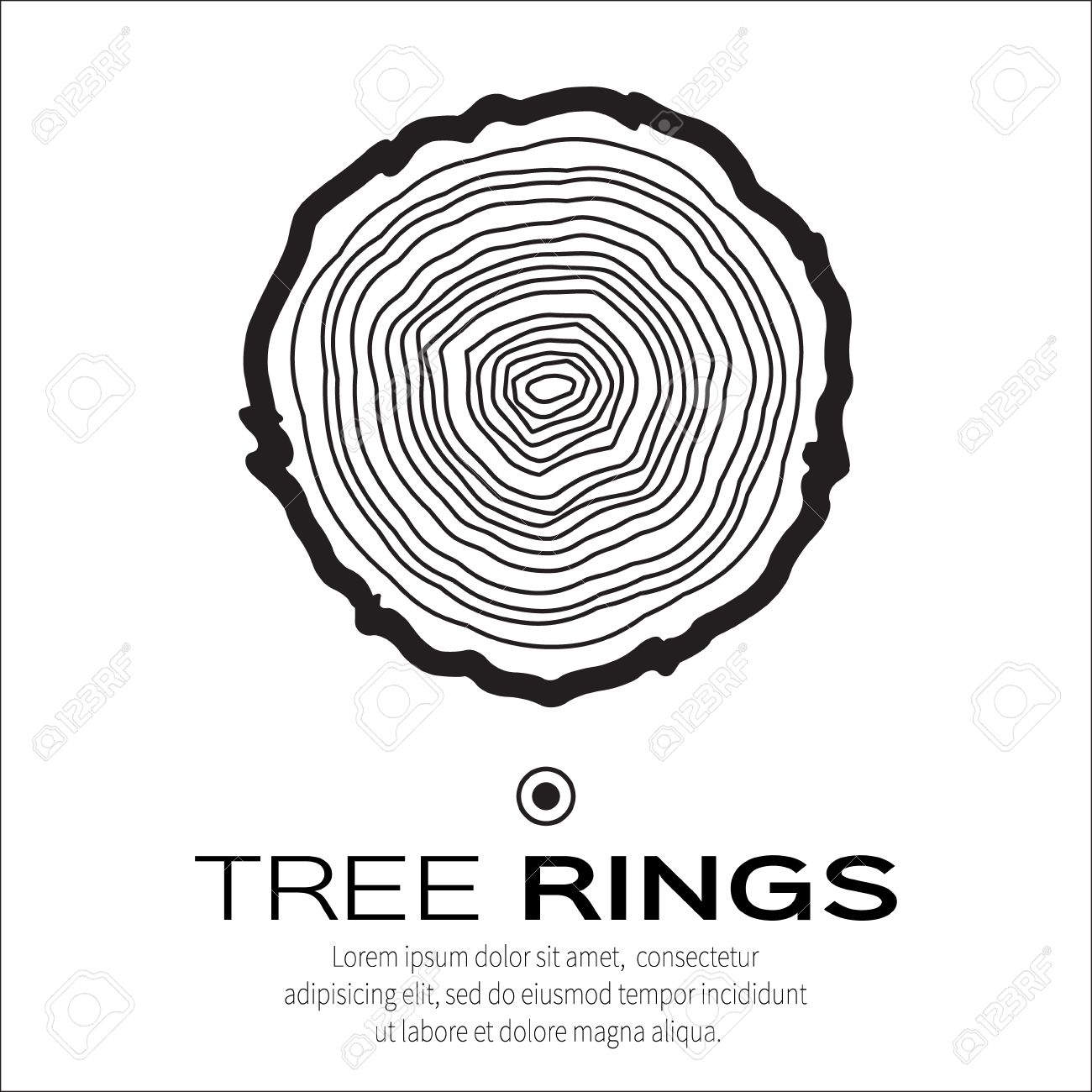Tree Rings Tree Trunk Rings Isolated Stock Vector 376902436 ...