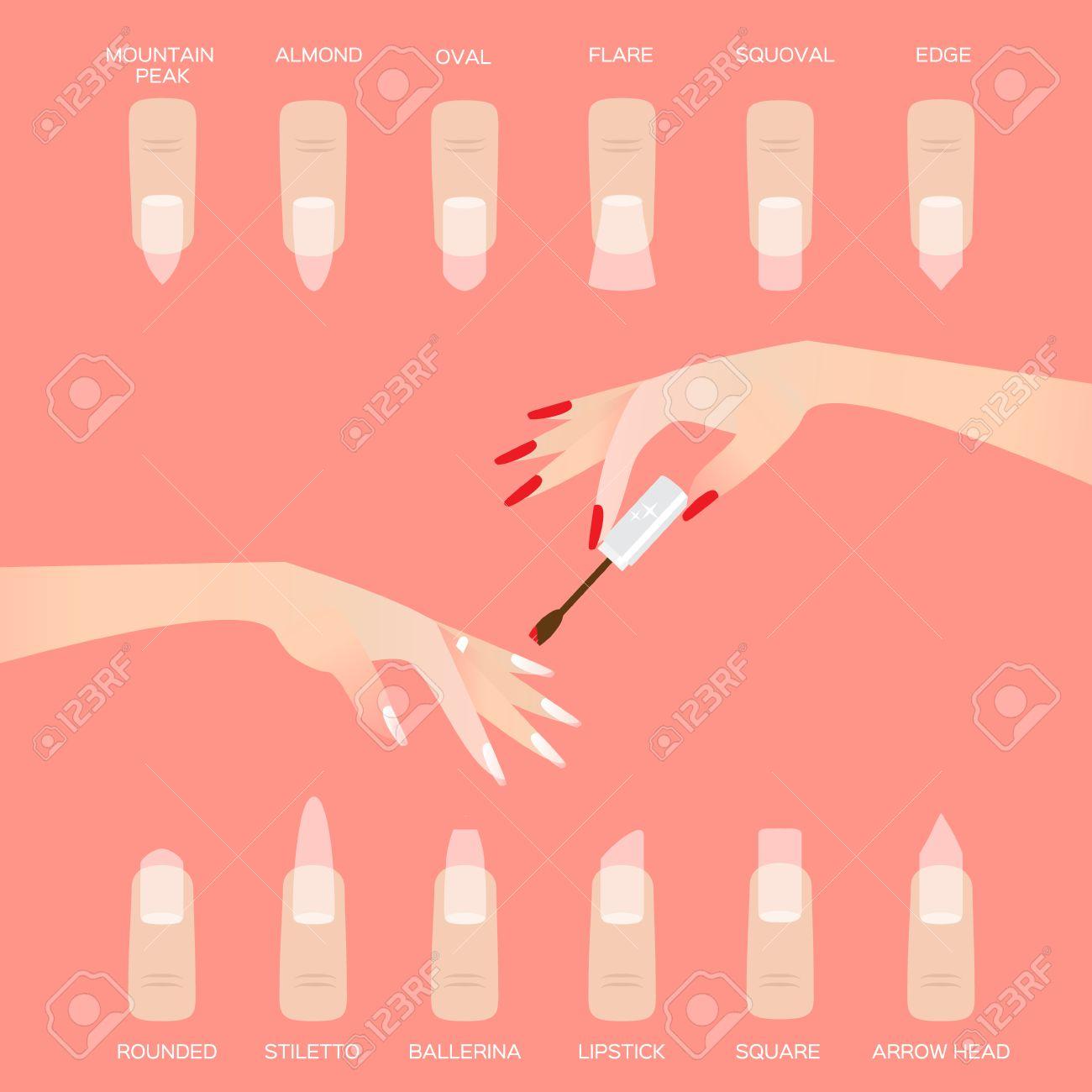 Different Nail Shapes. Woman Fingers. Fingernails Fashion Trends ...