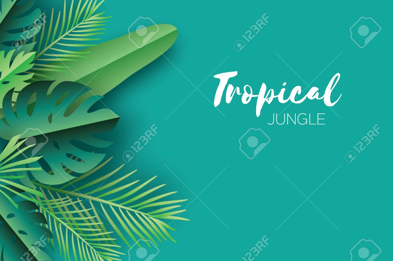 Trendy Summer Tropical palm leaves, plants. Paper cut style. Exotic Hawaiian summertime. Space for text. Beautiful dark green jungle floral background.Monstera, palm. Vector - 82683817