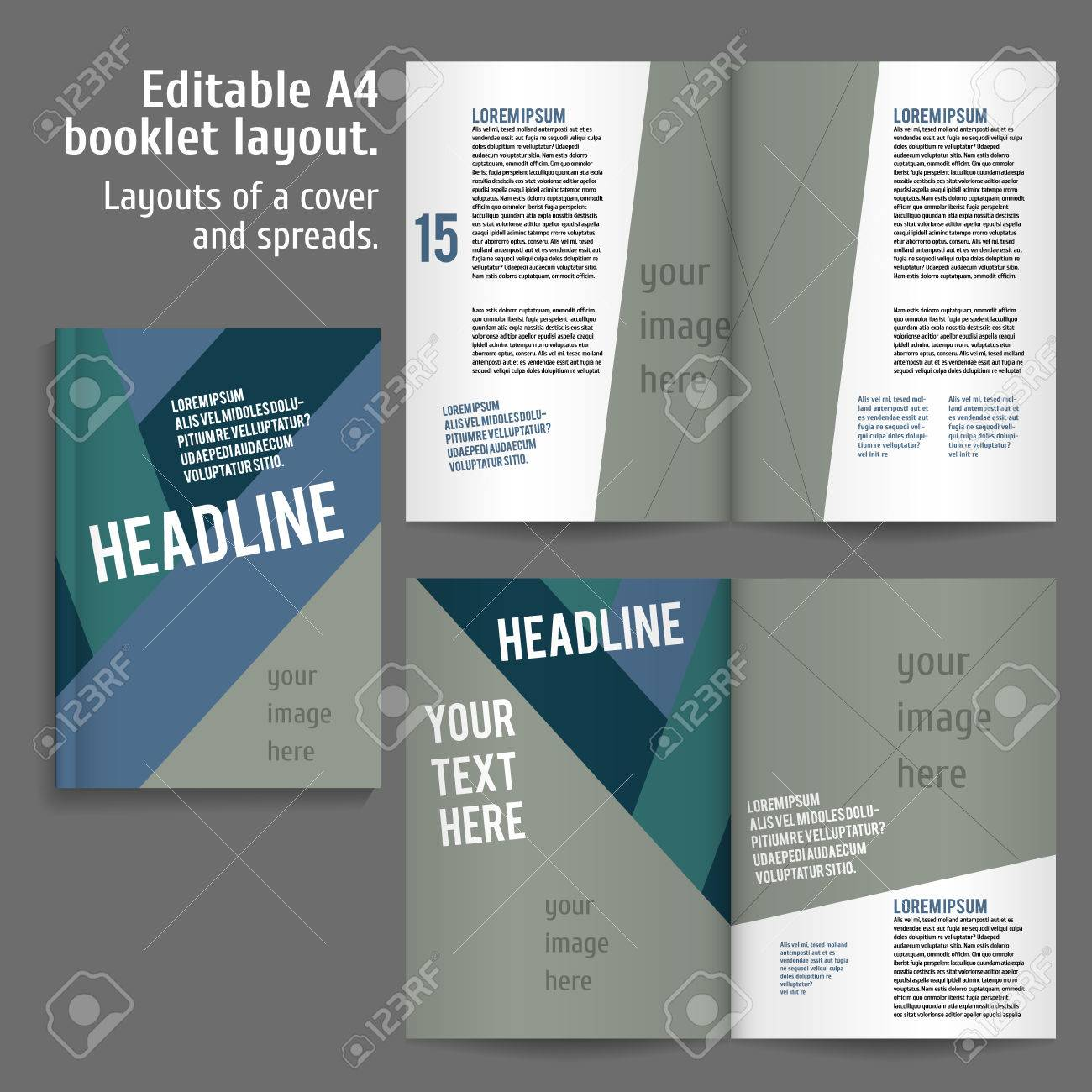 A4 Book Layout Design Template With Cover And 2 Spreads Of Contents Royalty Free Cliparts Vectors And Stock Illustration Image 46604210