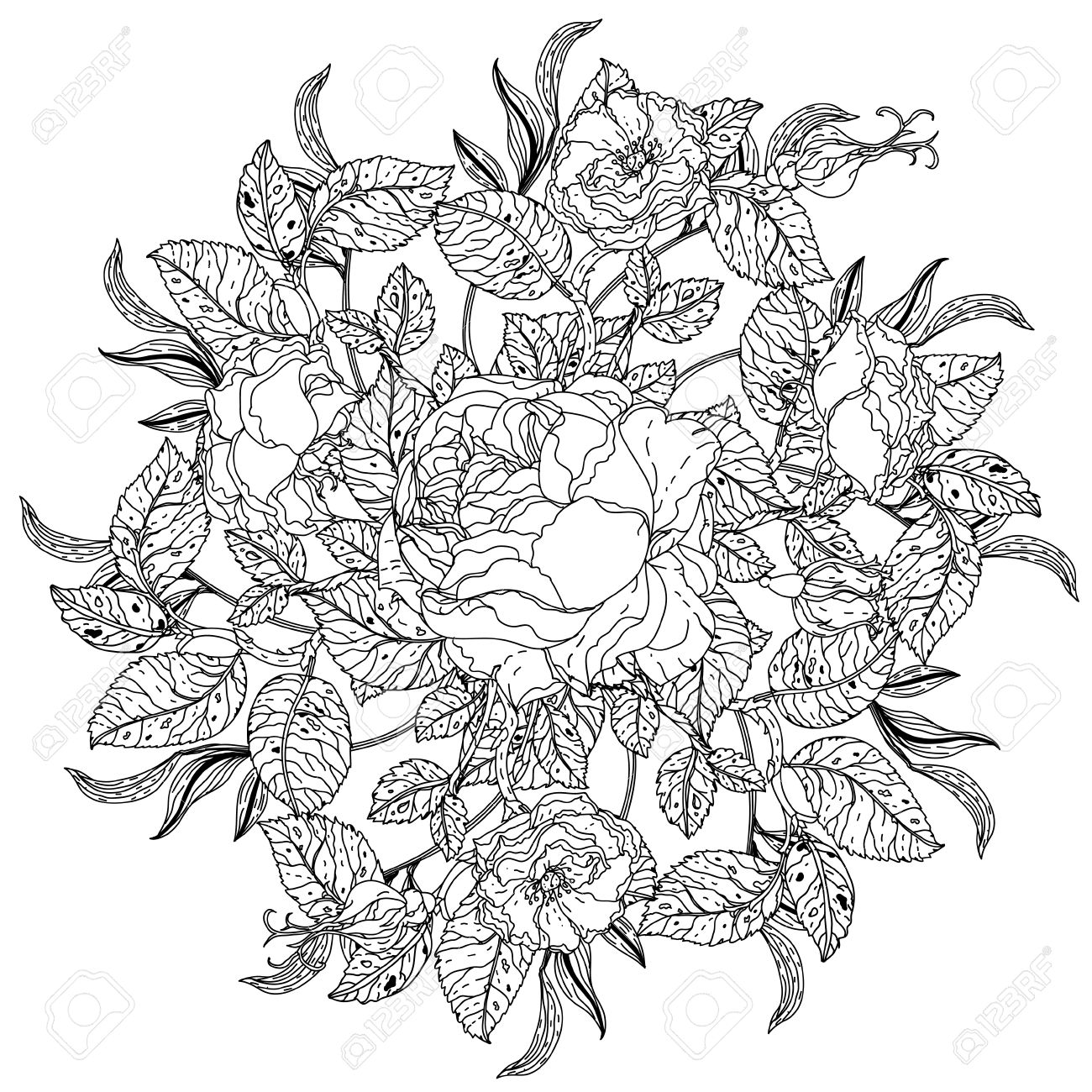 Mandala Shape Roses In Old Masters Style Bouquet For Adult Coloring ...