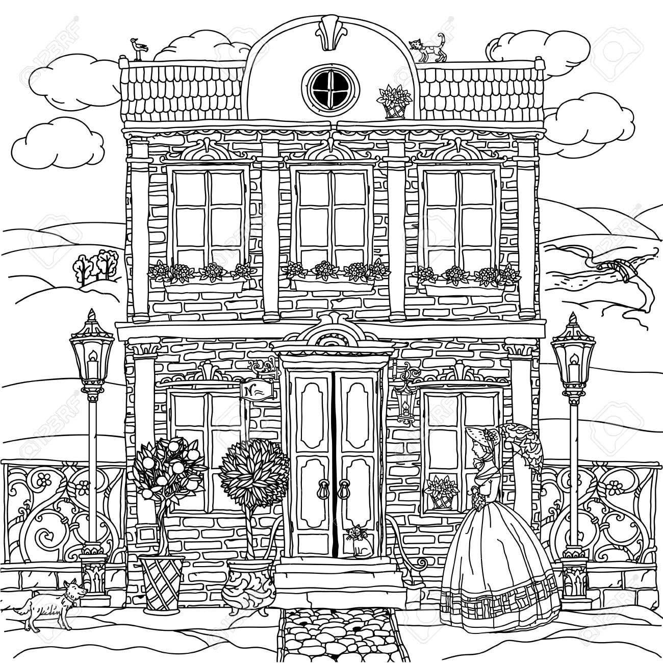 Frontage Of A House With Flowers, Plants, Cat And Dog For Adult ...