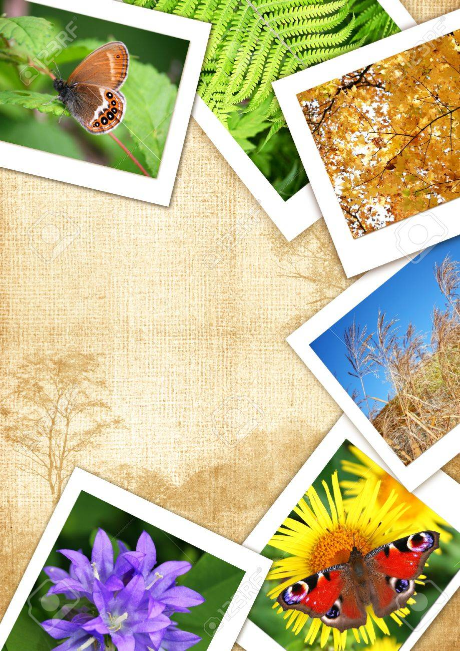 Frame from different photos for design and text Collage frame serial - 12955326