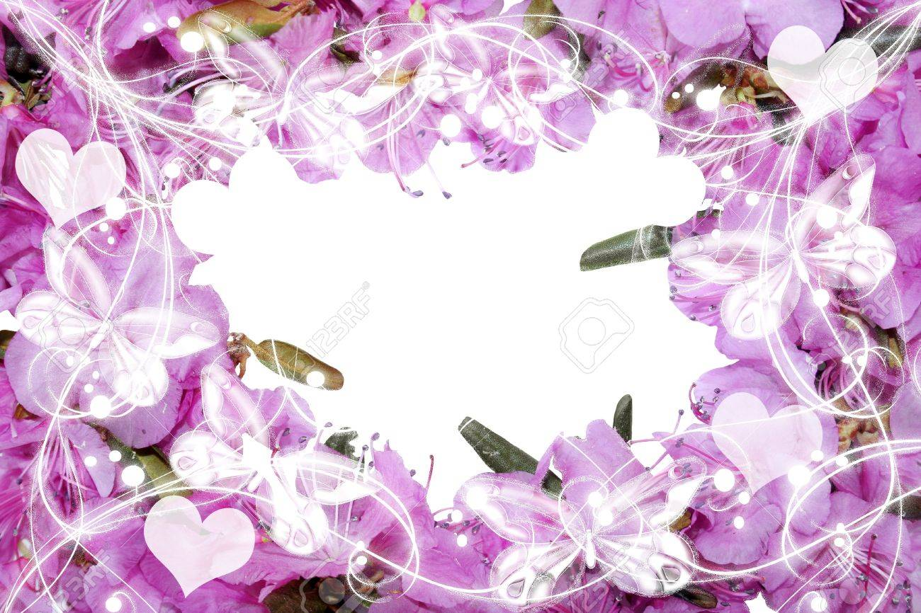 Pretty frame from pink flowers Stock Photo - 13608646