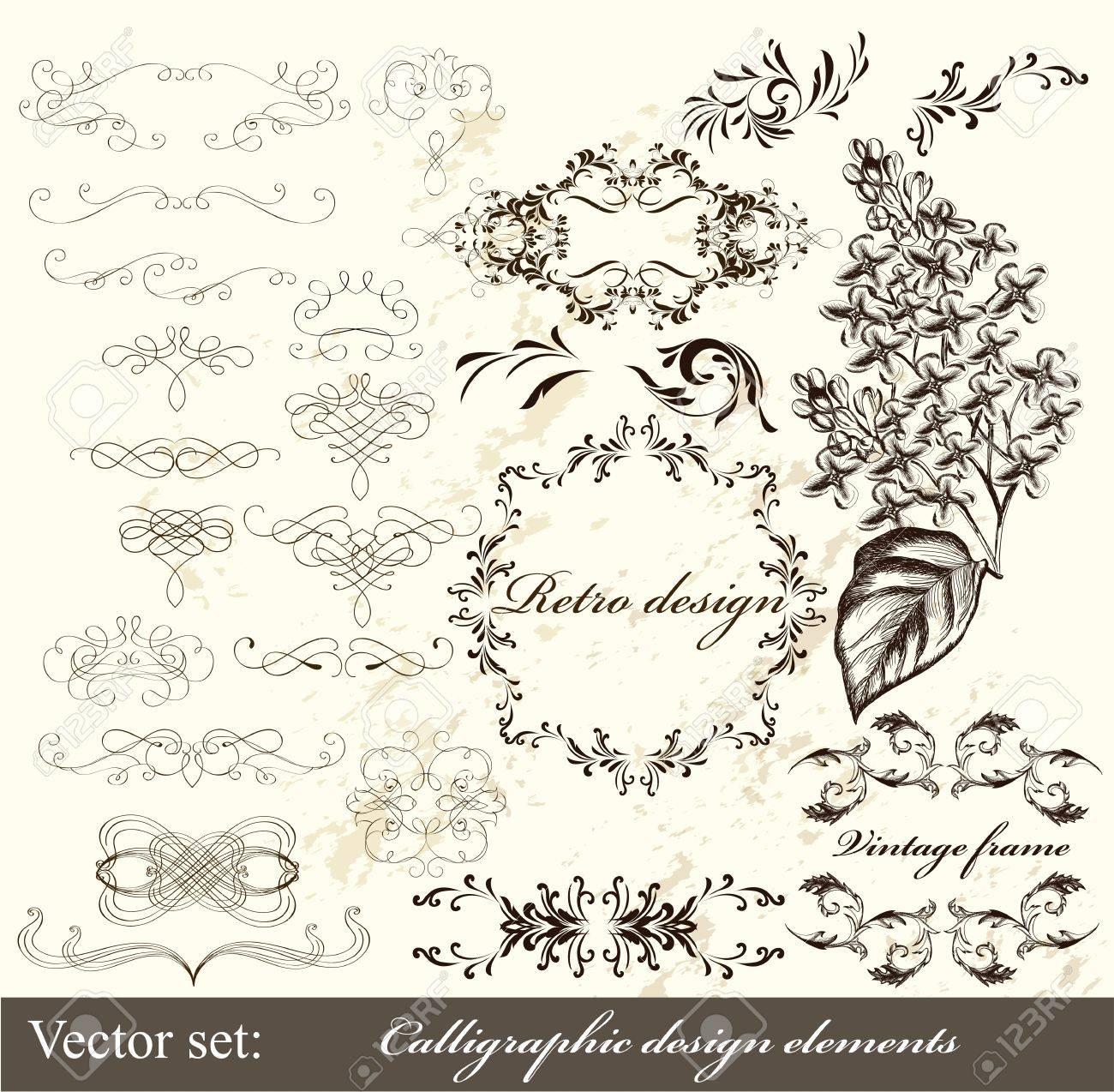 Decorative elements for elegant design  Calligraphic vector Stock Vector - 16483698