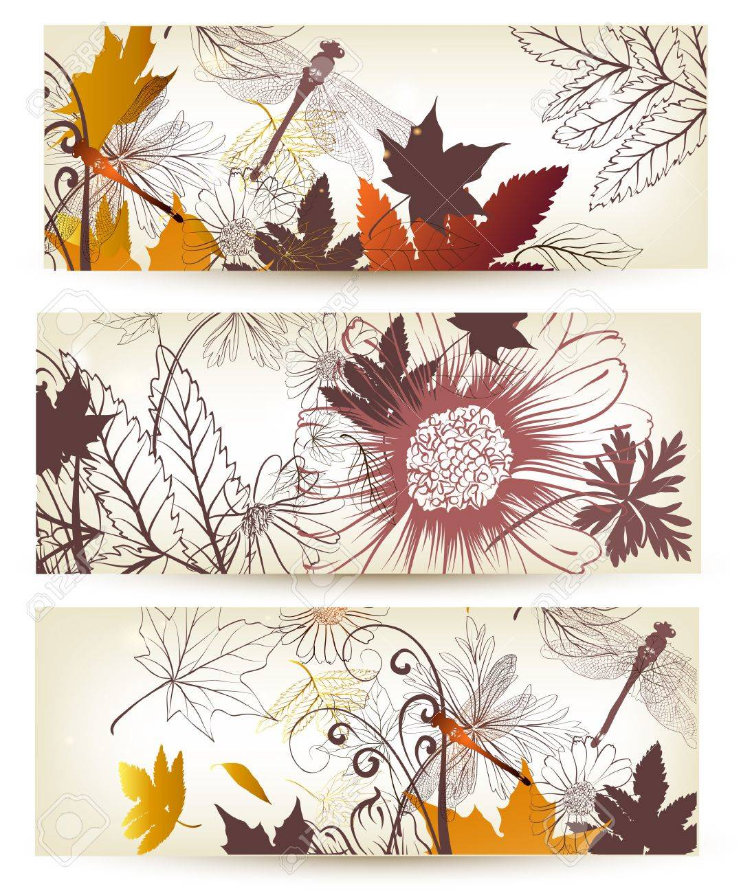 Set of floral brochures with flowers, leafs and butterflies Stock Vector - 18990145
