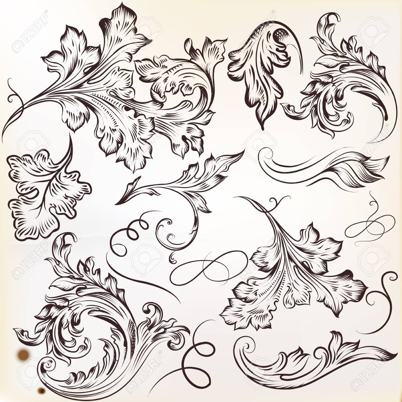 Vector set of calligraphic elements for design  Calligraphic vector Stock Vector - 20458806