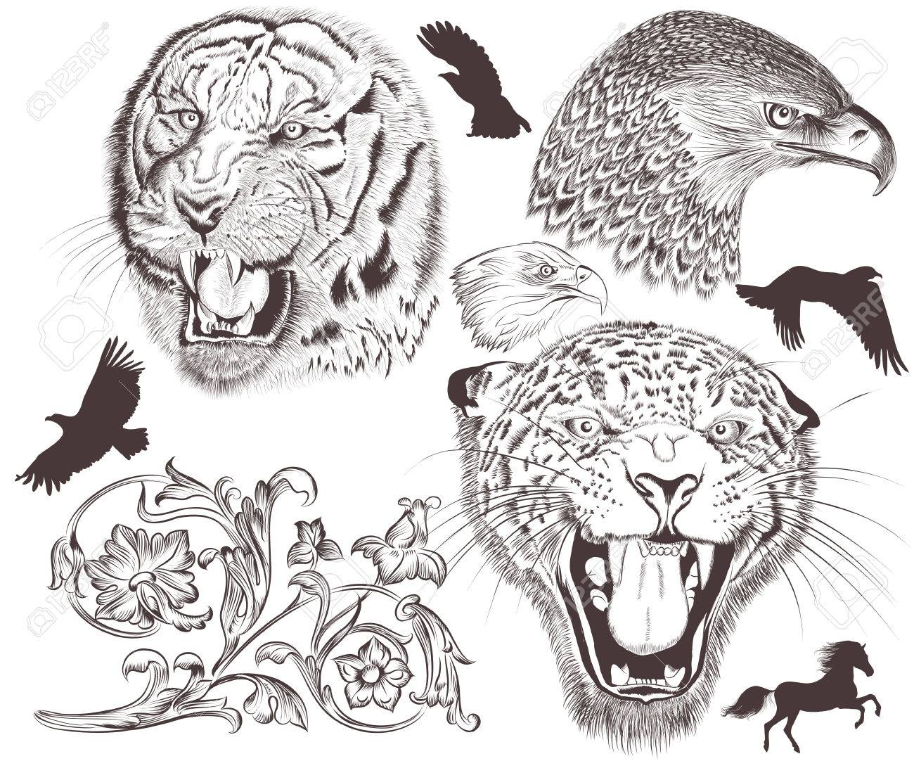 Uncategorized Drawn Pictures Of Animals collection of vector hand drawn animals royalty free cliparts stock 27452021