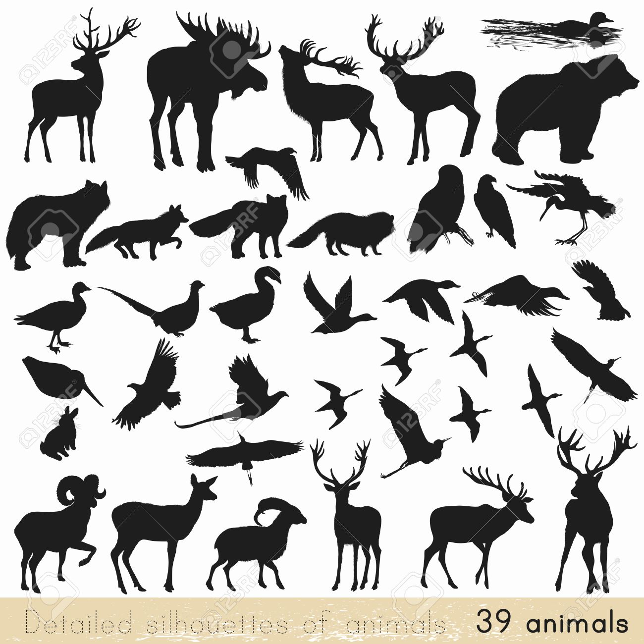 Collection of vector detailed silhouettes of forest animals Stock Vector - 44336393