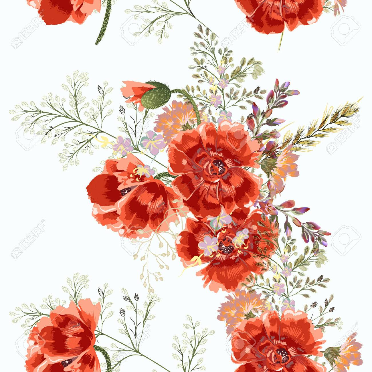 Floral Illustration With Field Poppy Red Flowers In Vintage
