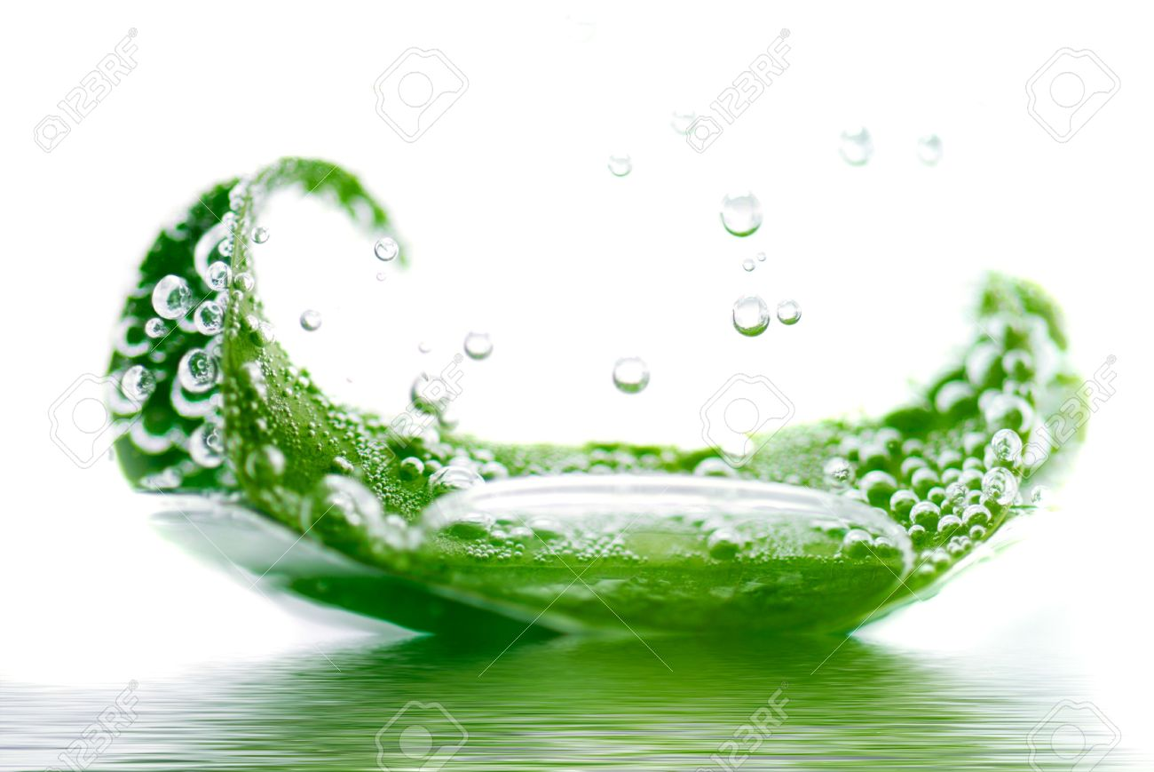 fresh leaf floating in water Stock Photo - 1216472