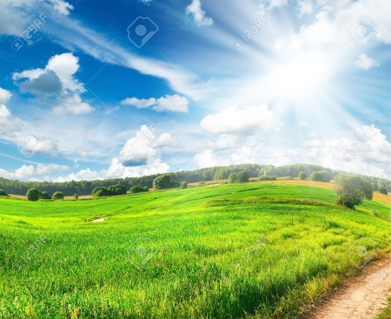 Summer landscape with green grass, road and clouds - 8707822