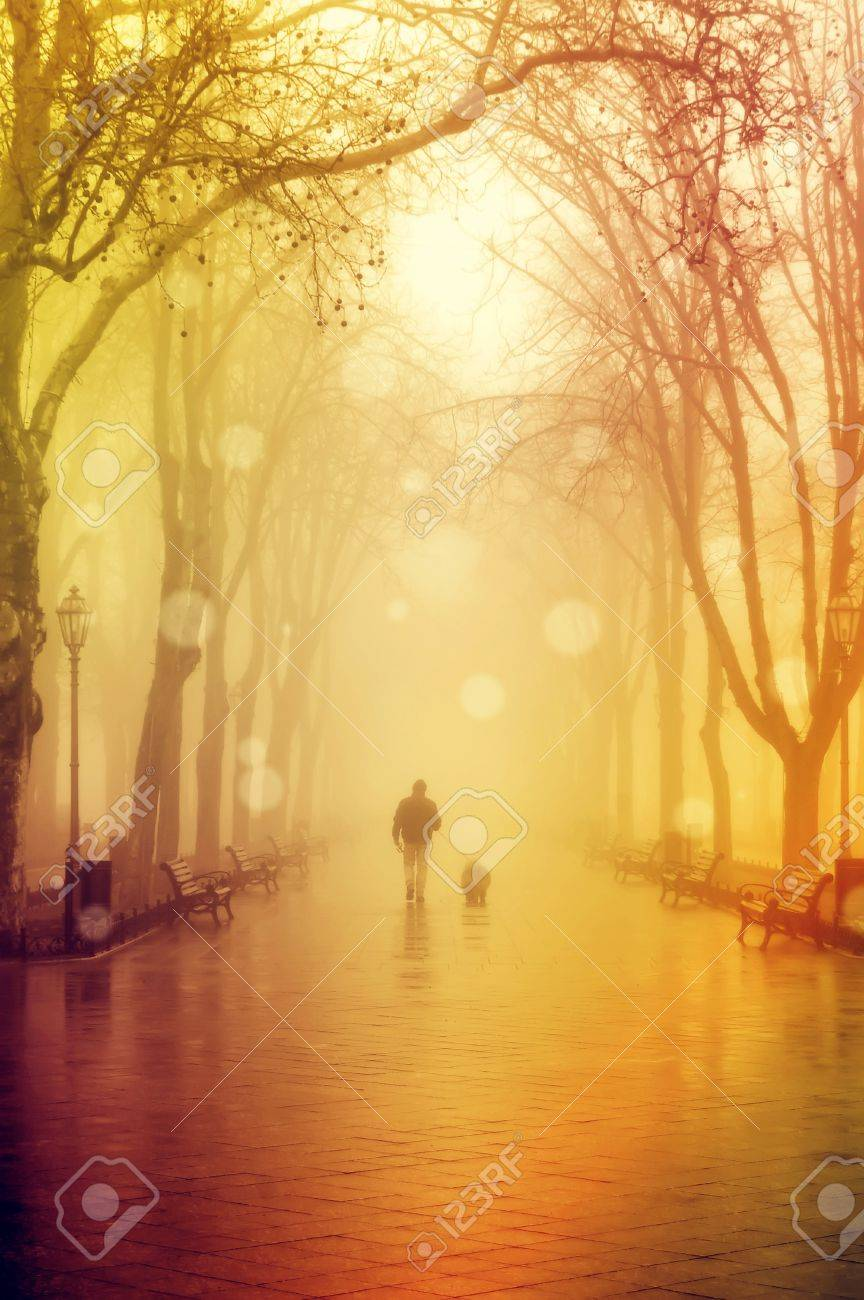 Walking men with dog in fog Stock Photo - 15118062