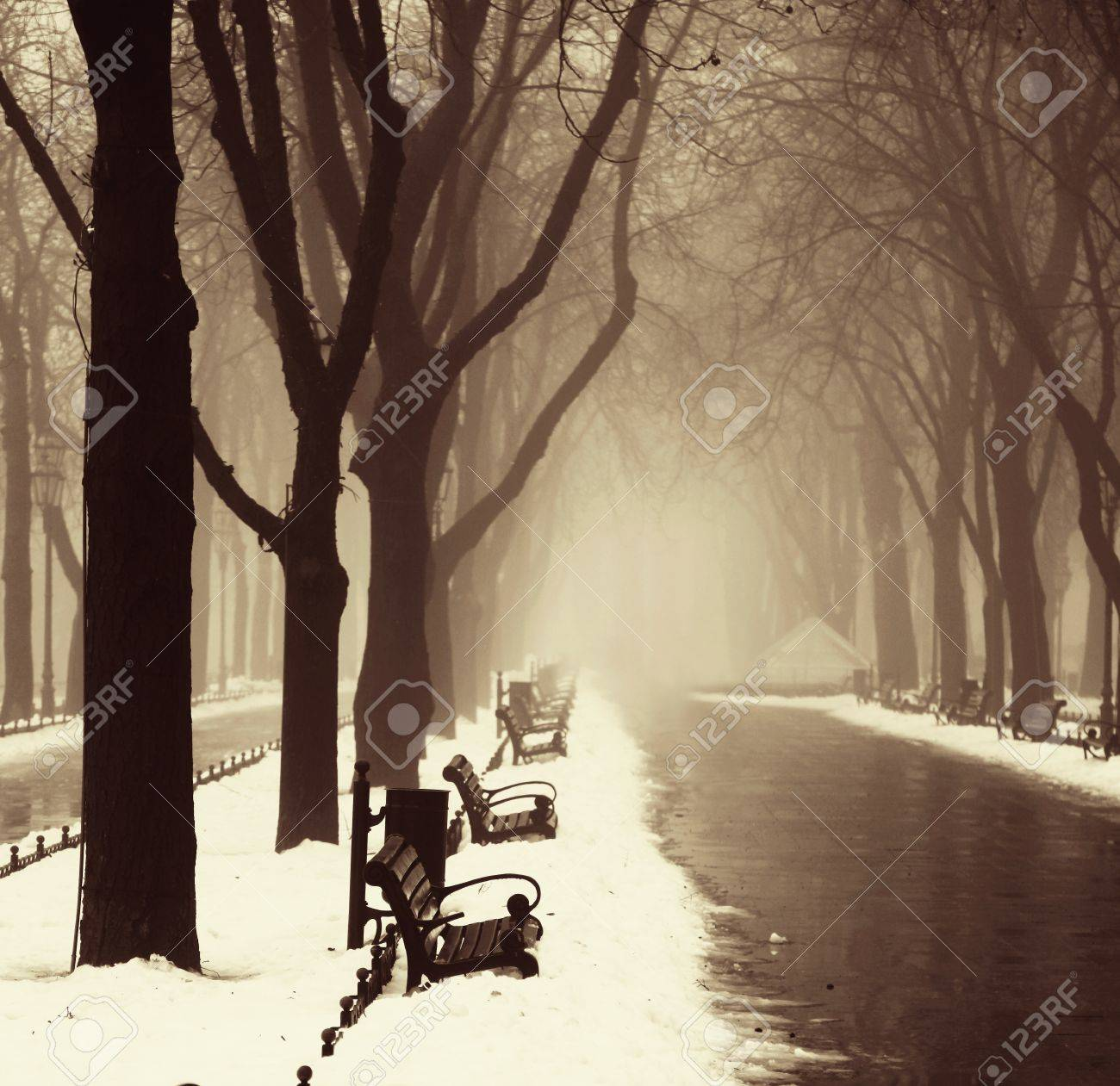 Winter alley in Odessa, Ukraine. Stock Photo - 16619443