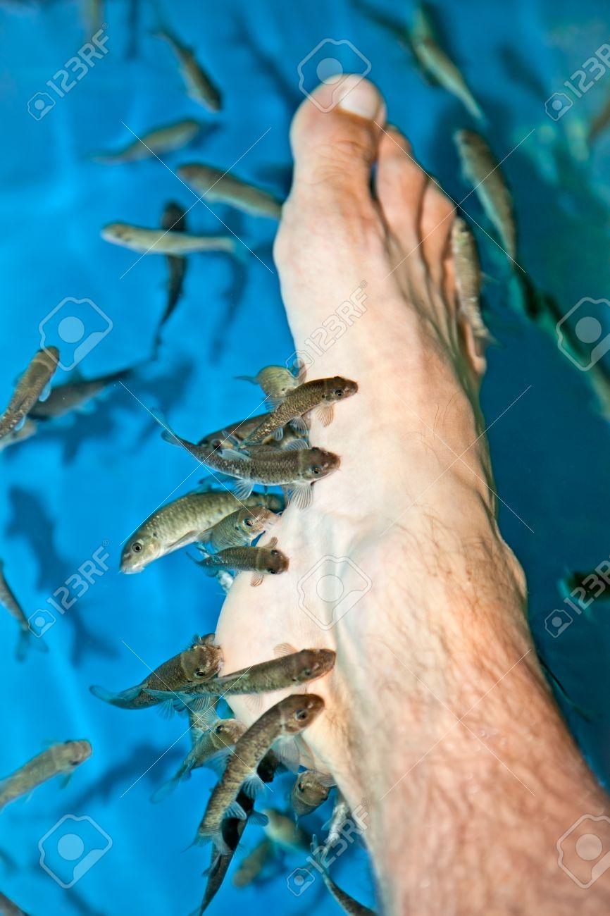 soin pied poisson