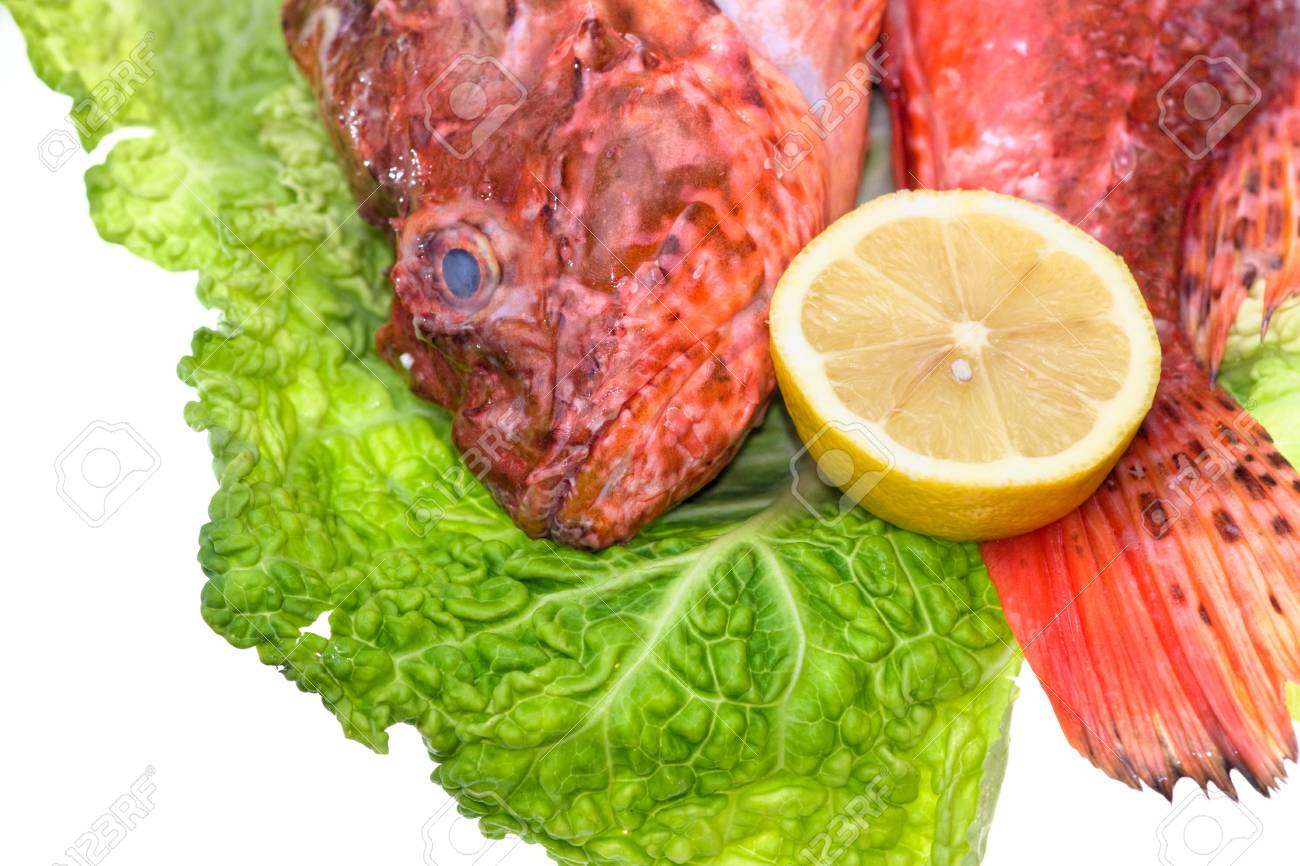 Fresh fish with with cabbage and lemon Stock Photo - 9075992