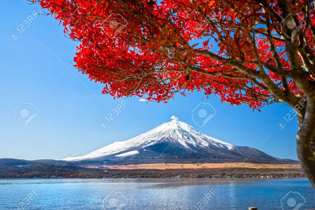 Mount Fuji reflected in Lake Yamanaka at dawn, Japan. - 36160732