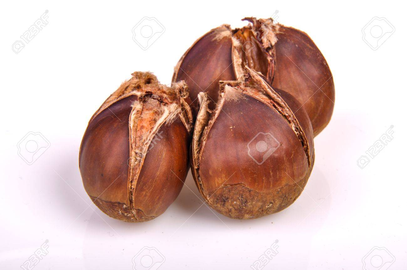 An image of roasted chestnut marron isolated. Castanea Sativa Stock Photo - 17427216