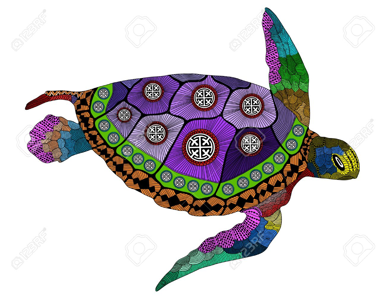 stylized color turtle hand drawn vector illustration coloring