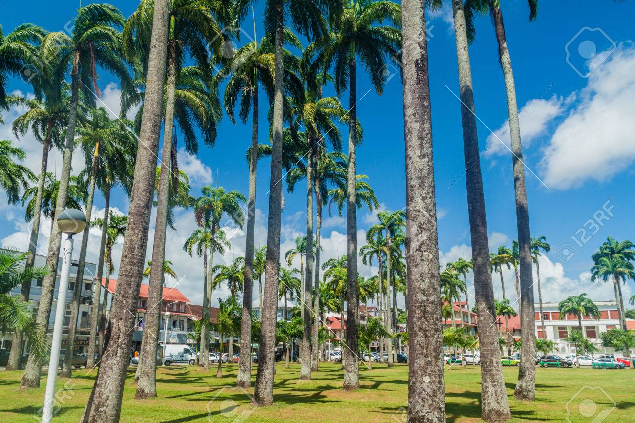 Place des Palmistes square in Cayenne, capital of French Guiana. - 63413853