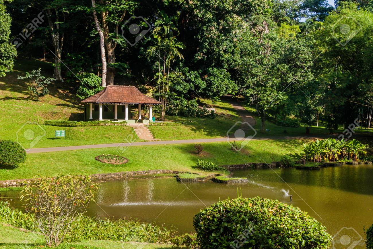 Small lake in Peradeniya Royal Botanical Gardens near Kandy,..